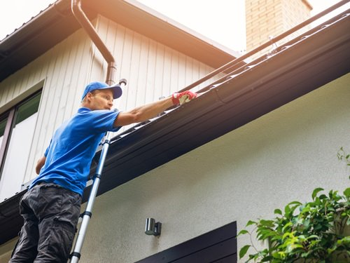 Spring maintenance ideas for your home